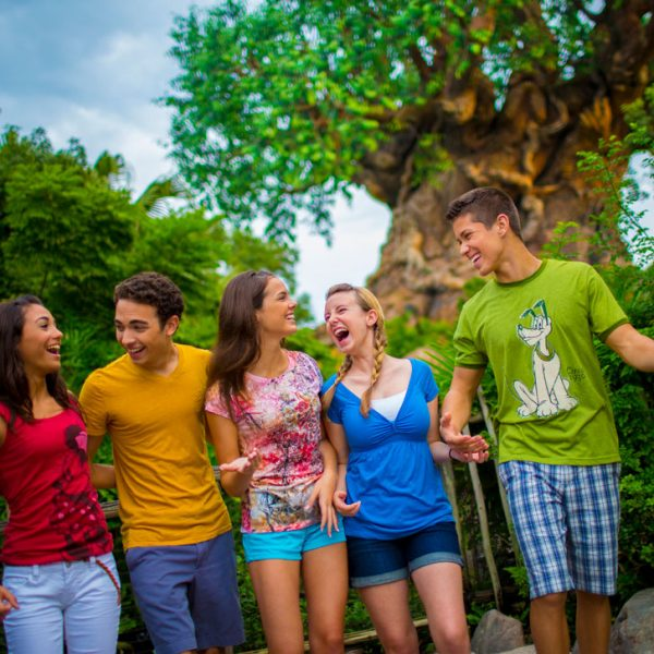 Experience the Enchantment of Disney's Animal Kingdom's Rivers of Light