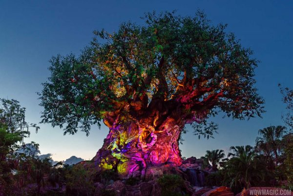 The Tree of Life Full 28044