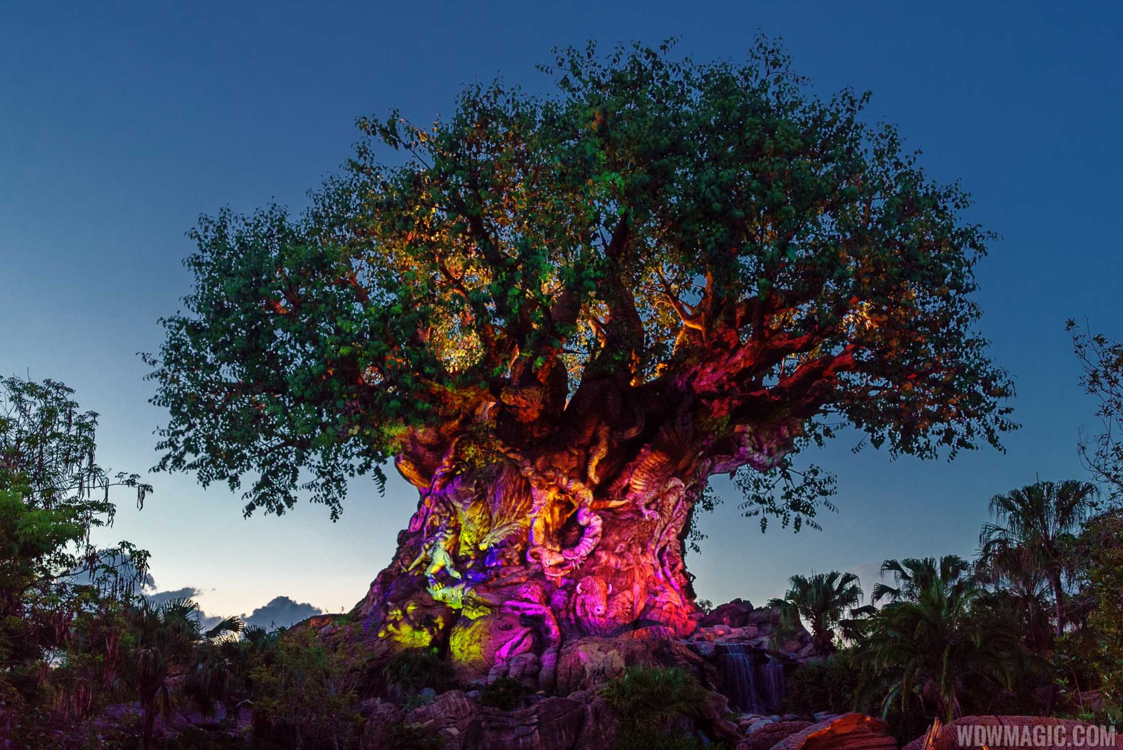 The Tree of Life Full 28044