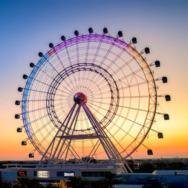wheel icon park