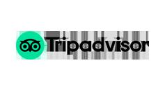 tripadvisor logo 240 130