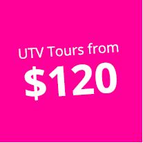 De Palm UTV Tours bullet