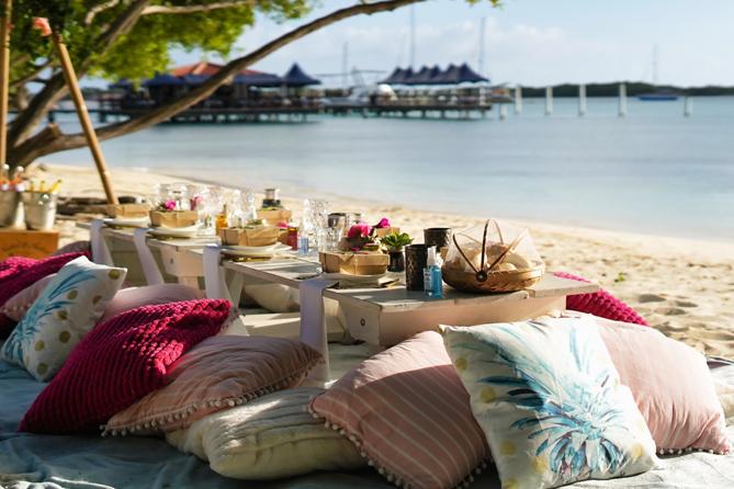 Luxury Picnic in Aruba 5
