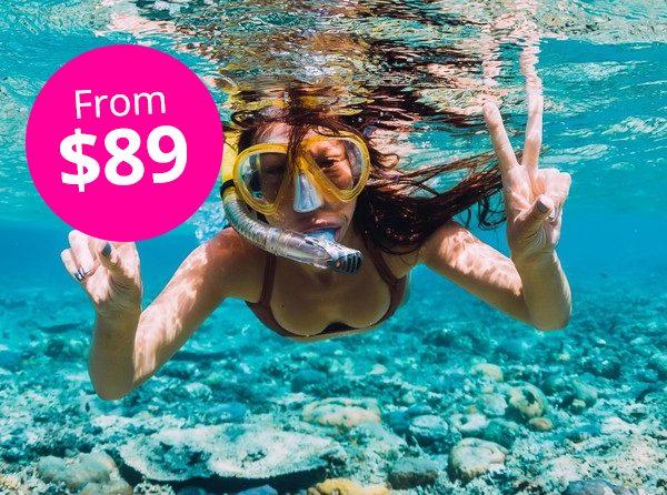 Palm Pleasure Snorkel Adventure 2