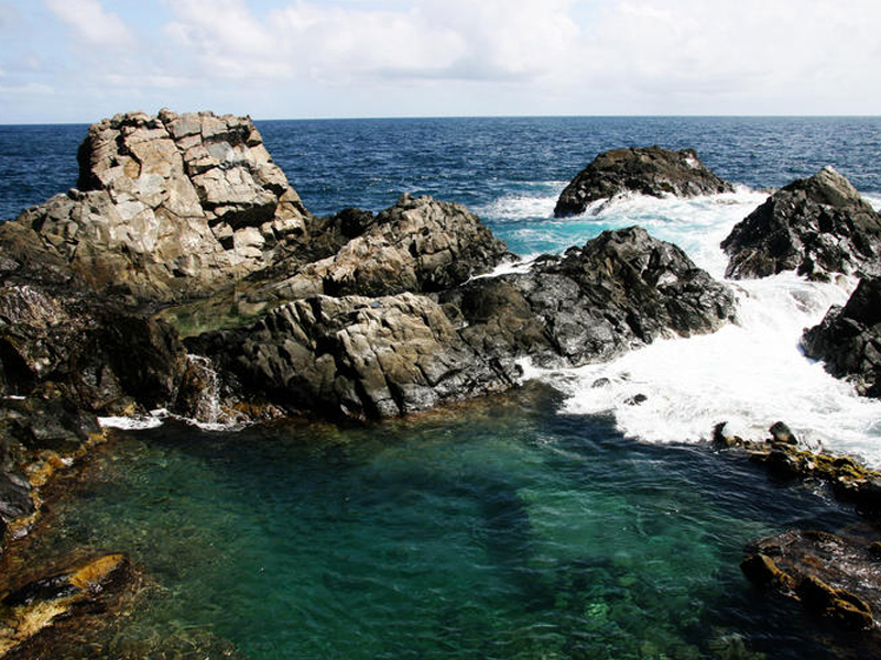 4. Natural Pool